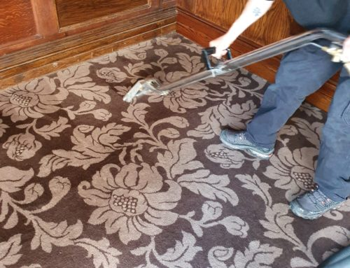 Commercial Carpet Cleaning – Get fresh for 2020!